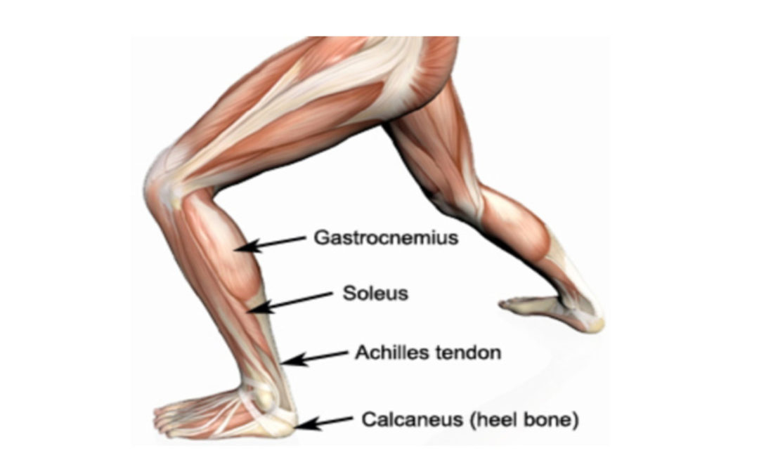 The Top 10 things not to do if you have a lower limb tendon injury or pain
